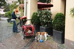Fahrradtour nach Xanten: Fressi- und Wasserpause.